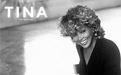 New musical about Tina Turner in development