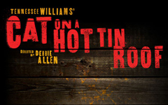 Black production of Cat on a Hot Tin Roof looking for diverse team