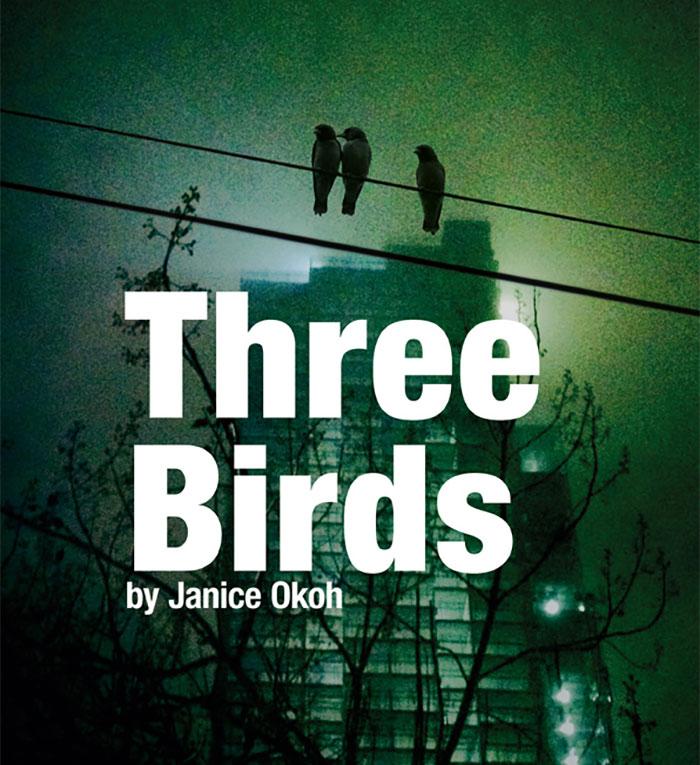 Three Little Birds by Janice Okoh